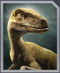 Jurassic World Alive Velociraptor